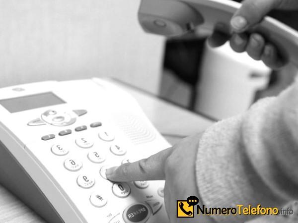 Información de posible llamadas de spam por teléfono del teléfono número 621-213-529